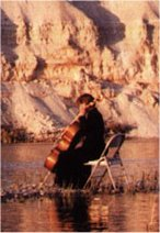 Photograph of cellist on rocks